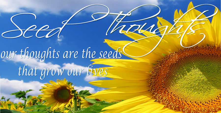 Seed-Thoughts-header3