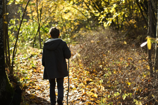 Boy Walking Down Forest Path