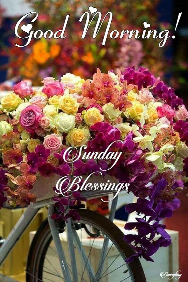 Sunday Blessingsd